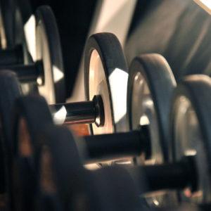 Fitness - manubri_H500